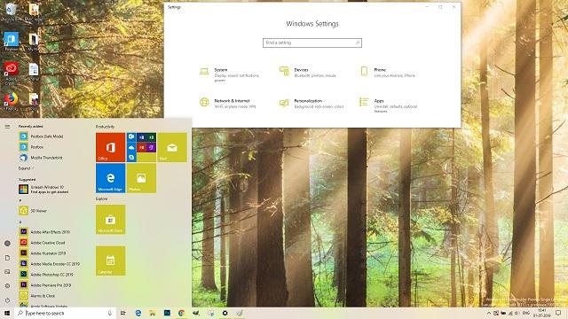 Chủ đề Forest Windows 10