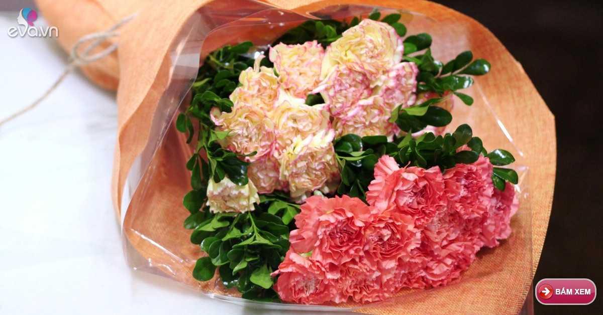 Hoa cẩm chướng, biểu tượng của tình yêu chân thành