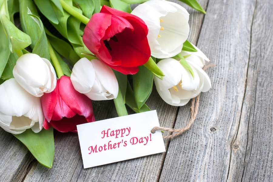 Lời chúc ý nghĩa dành cho mẹ