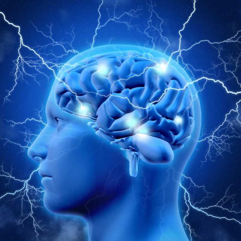 Nho đỏ bổ sung năng lượng cho não