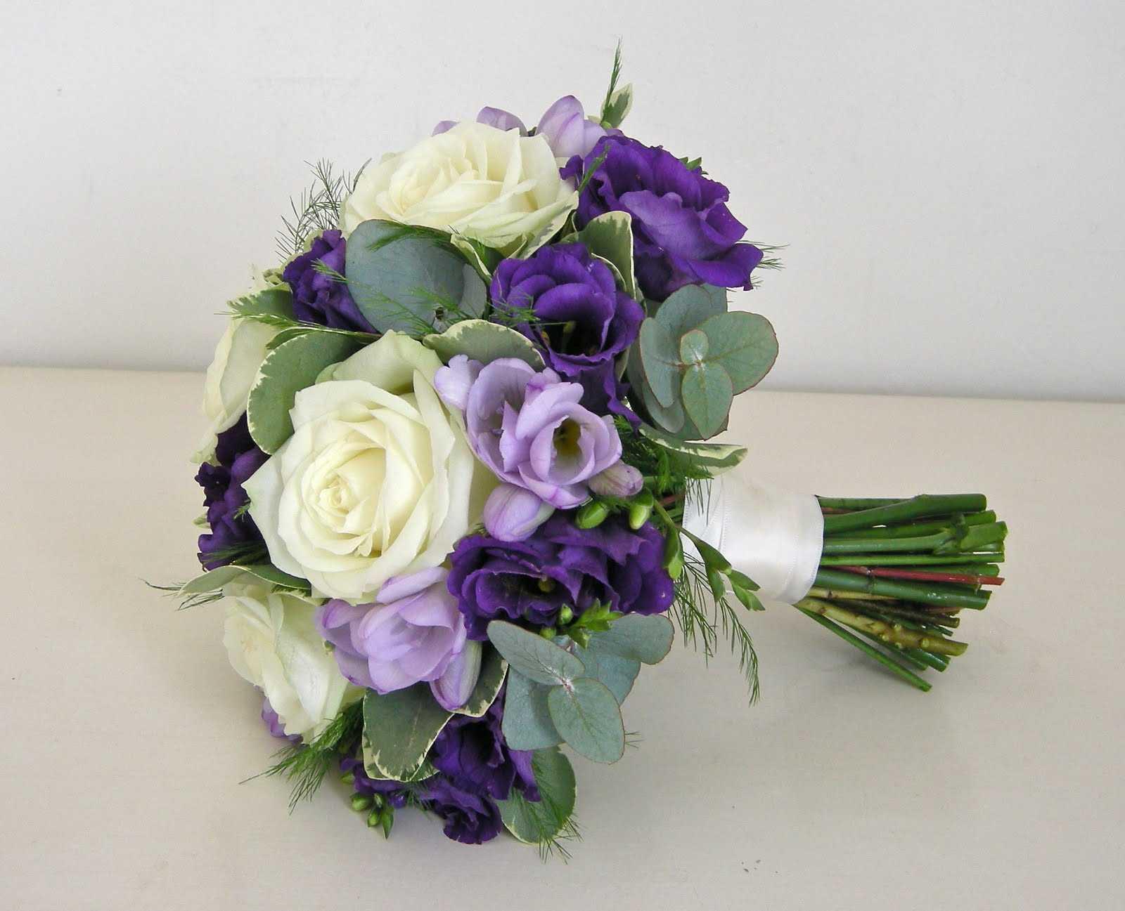 Hồng violet tím biểu trưng của tình yêu chung thủy chân thành