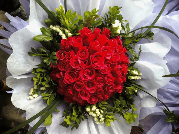 Cắm hoa hồng theo hình tròn đẹp mắt